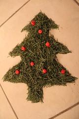 Christmas Tree Recycling (Sven Bonorden) Tags: christmas christmastree needles weihnachten weihnachtsbaum nadeln tannenbaum tannennadeln kerzen candles artwork kunstwerk grün green indoor canon