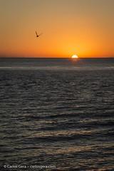 20180108-202105-2 (carlosgera) Tags: sunset puestadesol colonia coloniadelsacramento uruguay