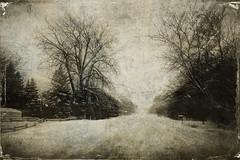 SUR LA ROUTE ENNEIGÉE (pierre.arnoldi) Tags: canada québec sthilaire pierrearnoldi photoderue photooriginale photocouleur photographequébécois phototexturée phototumblr neige canon6d on1photoraw2018