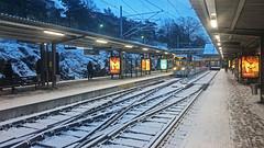 Chaos in the commuter traffic in Stockholm due to a little snowing (Franz Airiman) Tags: snö snow snökaos sl kollektivtrafik commutertraffic stockholm sweden scandinavia alvik nockebybanan metro tunnelbana subway station rail räls tåg train winter vinter sony sonyxperiaz3 xperia mobilfoto smartphone