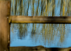 Posting Time. (Omygodtom) Tags: blue water golden design world detail reflections abstract art fence nikon70300mmvrlens d7100 dof oaksbottom