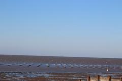 IMG_6940 (cindyincidentally) Tags: whitstable kent kentcoast britishbeach seaside seashore seasidetown