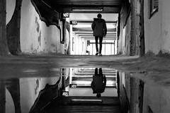 102/103 (O.Krüger) Tags: niedersachsen germany deutschland streetphotography sw schwarzweis socialdocumentary streetlife streetart bw bianconero blackwhite peopleinthecity people personen passage monochrom mirrorimage urban urbanexploration silhouette unterführung tunnel trainstation tube flickrunitedaward streetpassionaward