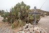 Arizona-2018_0583 (PetteriJarvinen) Tags: tombstone arizona unitedstates us boothillcemetery boothill