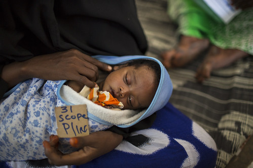 WFP Somalia