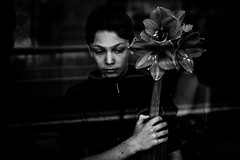 Portrait à l'amaryllis (PaxaMik) Tags: portrait portraitnoiretblanc black blackandwhitephotos fleur amaryllis portraitàlafleur window throughthewindow noiretblanc noir n§b melancholy mélancolie fenêtre fenster printemps spring reflection reflet