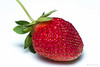 Strawberry (kelstar*) Tags: food fruit project365 project3652018 strawberries strawberry