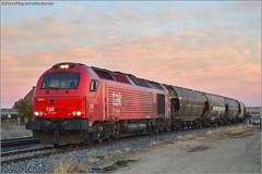 Babilafuente (David Nguema) Tags: 335 euro takergo babilafuente cargo train trainspotting spain rail