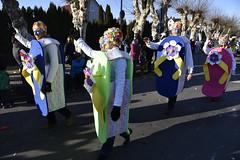 DSC8136 (Starcadet) Tags: dieburg dibborsch fastnacht dibojerfastnacht karneval prty brauchtum parade umzug fastnachtszug fastnachtdienstag fasching fasnet kostüme verkleiden südhessen cosplay spas humor clowns
