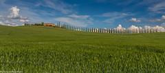 Agriturismo Poggio Covili - Pano (AnBind) Tags: ausland fotoreise orte urlaub arrreisen italien cinqueterreundtoskana ereignisse 2017 castiglionedorcia toscana it