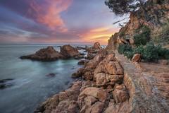 ...camino de ronda ... (franma65) Tags: calacanyet costabrava cala atardecer sunset ocaso sigma1020
