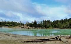 Sour Lake (Patricia Henschen) Tags: mudvolcano yellowstonenationalpark wyoming yellowstone nationalpark lake sour geothermal sulphurcaldron