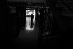 (stefan.pavic1) Tags: blackandwhite blackandwhiteonly bnw street streetbnw dimitrovgrad serbia nikon d80 18mm reflection silhouette