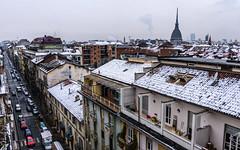 Roofs covered with snow in Turin. ((Paolo P)) Tags: torino turin italia italy city città strada street streetphotography cityscape paesaggiourbano architettura architecture moleantonelliana tetti roofs neve snow