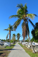 Key West (Florida) Trip 2017 7455Ri 4x6 (edgarandron - Busy!) Tags: florida keys floridakeys keywest cemetery cemeteries keywestcemetery