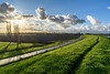 Follow the track (Ellen van den Doel) Tags: grass natuur netherlands sunset nature overflakkee nederland weer weather clouds goeree november 2017 road landschap regen weg sky track zonsondergang rain landscape lucht denbommel zuidholland nl