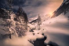 Winter...Mountain... (Croosterpix) Tags: landscape winter mountain sunrise morning magic nature predoi trentinoaltoadige italy it trees sky sony a7r nikkor1835