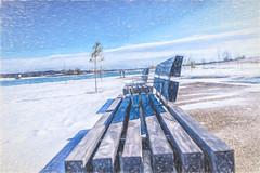 Too Cold (sumnerbuck) Tags: memphis shelbyfarmspark snow water flickrdiamond diamondclassphotographer