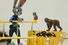 _DSC0239 (Tin How's Toy Photography) Tags: zootopia judy hopps yotsuba revoltech kaiyodo