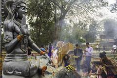 Maha Shivaratri at Haleswar Temple (Pranab Kumar Ojah) Tags: shivratri india tezpur assam temple culture