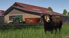Claas Arion 530 & Strautmann Verti-Mix 1801 Double (Malmöstad) Tags: cattle crops claas arion 530 strautmann vertimix 1801 double game screenshot video pc simulator farm farming cow ai