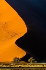 Curves (Nedko Nedkov) Tags: 40 45 deadvlei dune namib namibia spossusvlei landscape wildlife