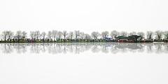 Hangzhou Rain (Christographe) Tags: hangzhou lake rain bw umbrella trees china