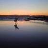 surfing downunder (sculptorli) Tags: surfing downunder australia beach sunset byronbay newsouthwales surfer reflection sea