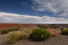 Dead horse point, Utah (Guillaume DELEBARRE) Tags: utah usa america west ouestaméricain landscape paysage desert plant rocks 6d canon tamron2470f28 sky clouds bluesky