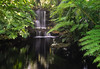 Selby Gardens waterfall. (Tim Ravenscroft) Tags: waterfall foliage pool water reflections selbygardens sarasota florida hasselblad hasselbladx1d x1d