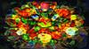 Bildschichten Fruechteteller 47 (wos---art) Tags: früchte arrangements stillleben fotografie bildschichten früchteteller obstteller geschnittenesobst früchtestücke inliebe füresther obst orangen kiwi banane birne himbeeren ananas weintrauben apfel