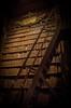 Sapienza (holzer_r) Tags: library nationalbibliothek wien vienna austria österreich bücher books bookshelf bücherregal knowledge wissen