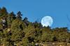 Supermoon (Jeff Mitton) Tags: supermoon boulder colorado flagstaffmountain fullmoon moon moonset earthnaturelife wondersofnature}