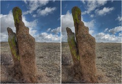 Standing Stone (turbguy - pro) Tags: 3d crosseye crossview stereo