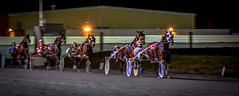 In the last stretch ........... (Christie : Colour & Light Collection) Tags: standardbred sulky harnessracing horseracing jockey race horse harness wheelsinmotion betting wager track racetrack excitement bet trot cart gait motion movement senseofmotion wheels ghosting face sulkyracing