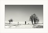 Winter cyclist (piontrhouseselski) Tags: cz south moravia tree fog winter snow aoi elitegalleryaoi bestcapturesaoi aoi3levels
