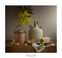 De amarillos ..... (.... belargcastel ....) Tags: botijo damajuana bodegón still stilllife texturas mazorca mimosas tomates libro luz light españa spain galicia belargcastel belénargüeso