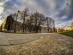 Welcome to My Palace (RS400) Tags: palace building art hdr wow cool england southwest bristol city hall welcome olympus travel tree trees photography fish eye lens fisheye low down path wide angle sunset sky clouds blue