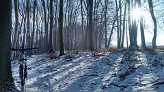 über den Plainberg (twinni) Tags: mw1504 04032018 bike biketour flachgau salzburg austria österreich winter schnee winterbike winterradl bergziege 20 mountainbike mtb hardtail