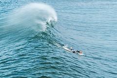 Surfers_Big_Waves58 (davidgibby) Tags: surfing surfer surfboards bigwave