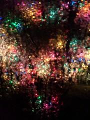 Holiday Bokeh (KsCattails) Tags: kscattails christmas lights rain reflection bokeh night