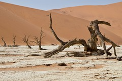 Dead Vlei (near Sossusvlei), Namib-Naukluft National Park, Namibia, 26 Jun 2017 (ctmlondon) Tags: africa namibia scenery canon canon80d namibiadesert namibianaukluftnationalpark desert dunes sand sossusvlei deadvlei