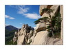 Le pin alpiniste / Ulsan Bawi (PtiteArvine) Tags: montagne rochers sommet arbres pins paysage ulsanbawi seoraksan coréedusud asie