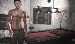 The Billiard Table (AA Style ★ Hipster Style ★ AR2 Style) Tags: hipsterstyle kustom9 legalinsanity straydog zerkalo secondlife