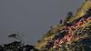 Don't Jump (RoosterMan64) Tags: hortonplains landscape littleworldsend mountians srilanka