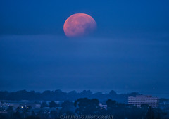 Supermoon Floating in the Cloud Sea (Jaykhuang) Tags: fullmoon moonset mooneclipse supermoon bluemoon 1312018 sunrise jayhuangphotography yiupai planitapp sanfrancisco oakland sanleandro