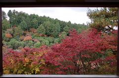 三室戸寺 Mimuroto-ji Temple (ELCAN KE-7A) Tags: 日本 japan 京都 kyoto 宇治 uji 三室戸寺 mimurotoji temple ペンタックス pentax k3ⅱ 2017