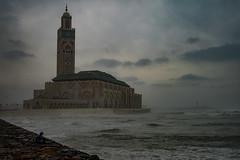 Casablanca, Morocco (maykal) Tags: morocco maroc marruecos casablanca fas المغرب الدارالبيضاء جامع مسجد