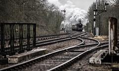 Making the grade (Peter Leigh50) Tags: great central railway winter gala gcr railroad rail bridge signal train steam b12 track line dull grey