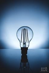 47/365 - LED Filament (Forty-9) Tags: yongnuo 3652018 eos60d yongnuospeedliteyn560iv photr lightroom flash canon strobism project3652018 softbox forty9 strobist studio project365 efs1785mmf456isusm 365 2018 efslens tomoskay photoaday lightbulb 16022018 filament bulb 47365 day47 led february 16thfebruary2018 friday ledfilament light